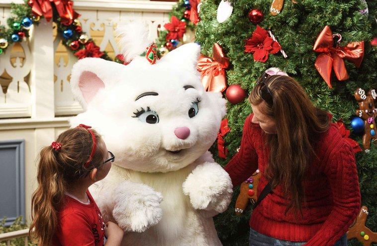 Weihnachten Angebote Disneyland